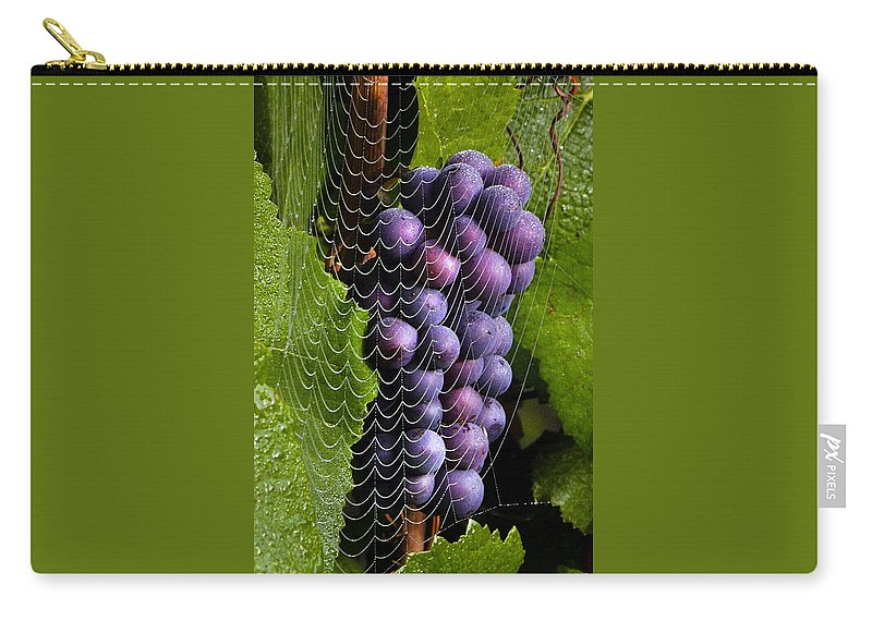 Cobweb Carry-all Pouch featuring the photograph Wine In A Web by Jean Noren