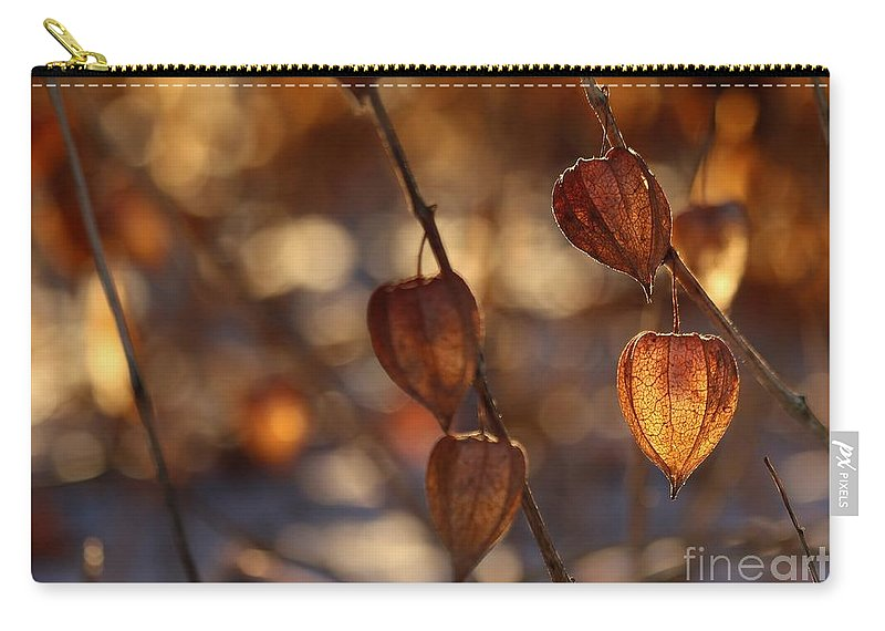 Winter Carry-all Pouch featuring the photograph Winter's Light by Kenny Glotfelty