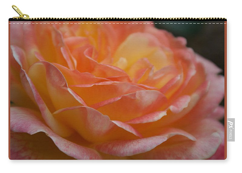 Yellow And Hot Pink Rose Carry-all Pouch featuring the photograph Yellow And Hot Pink Rose I by Jacqueline Russell