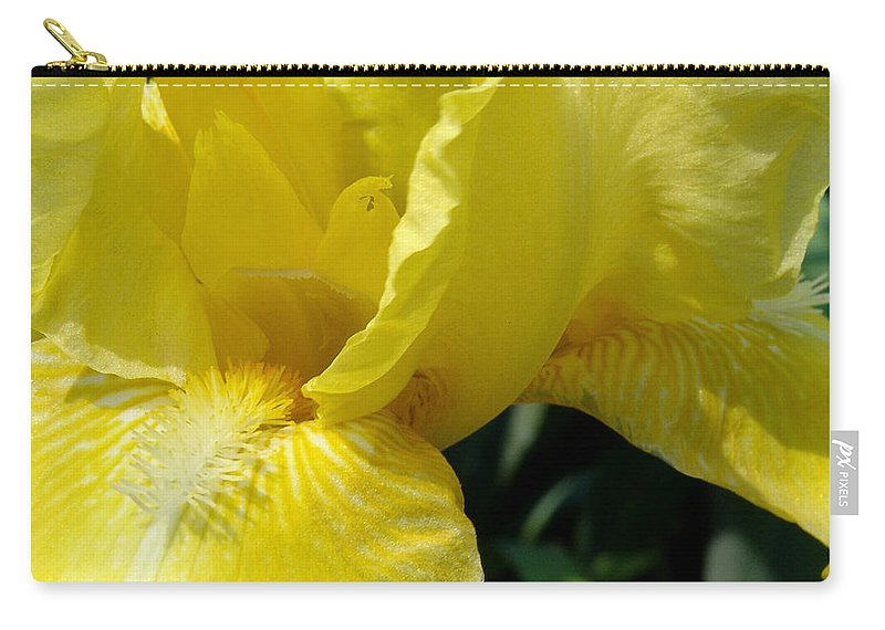 Yellow Carry-all Pouch featuring the photograph Yellow Iris by David Hohmann