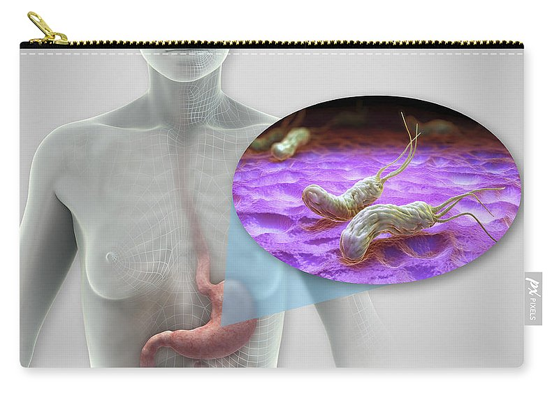 Digitally Generated Image Carry-all Pouch featuring the photograph Helicobacter Pylori by Science Picture Co