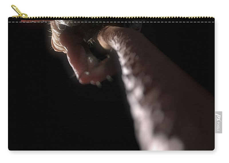 Digitally Generated Image Carry-all Pouch featuring the photograph Head Louse by Science Picture Co
