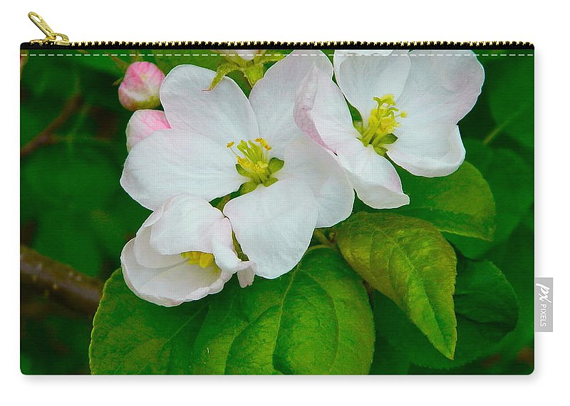 Nature Carry-all Pouch featuring the photograph Apple Blossoms by Johanna Bruwer