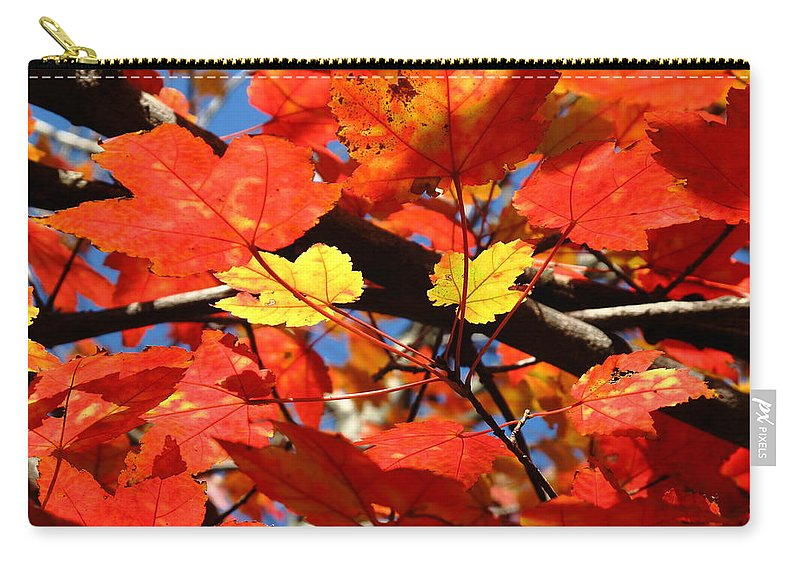 Art Carry-all Pouch featuring the photograph Autumn Leaves by Frank Romeo