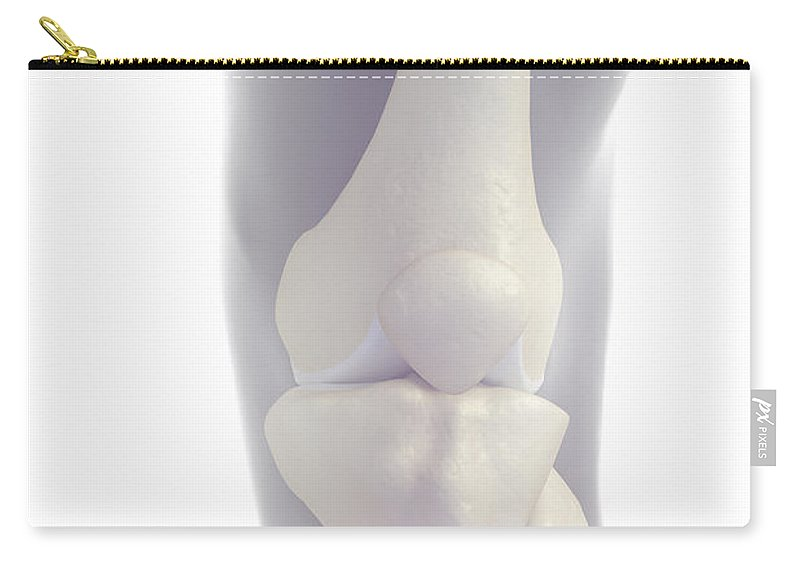 Knee Cap Carry-all Pouch featuring the photograph Bones Of The Knee by Science Picture Co