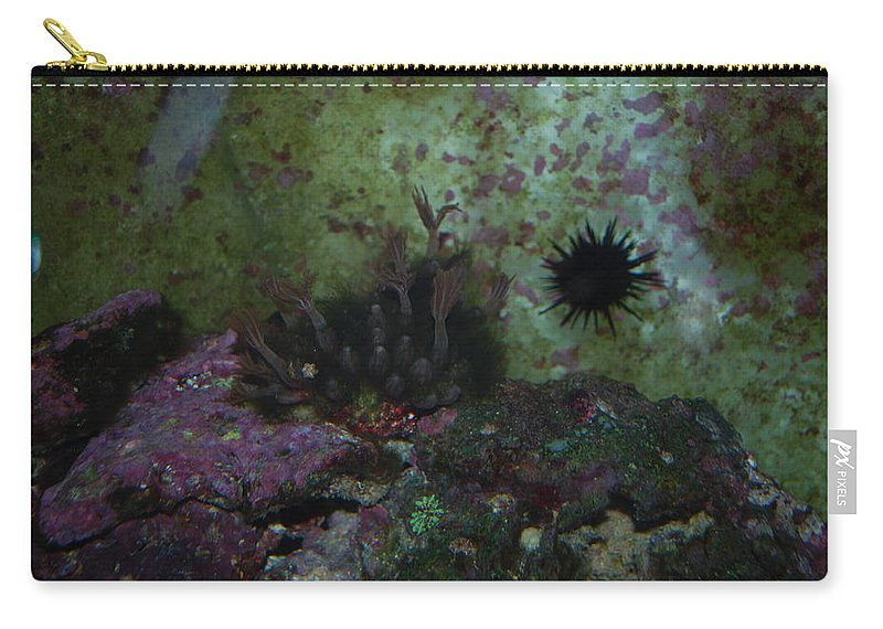Taken Through Side Of Aquarium Carry-all Pouch featuring the photograph Coral by Robert Floyd