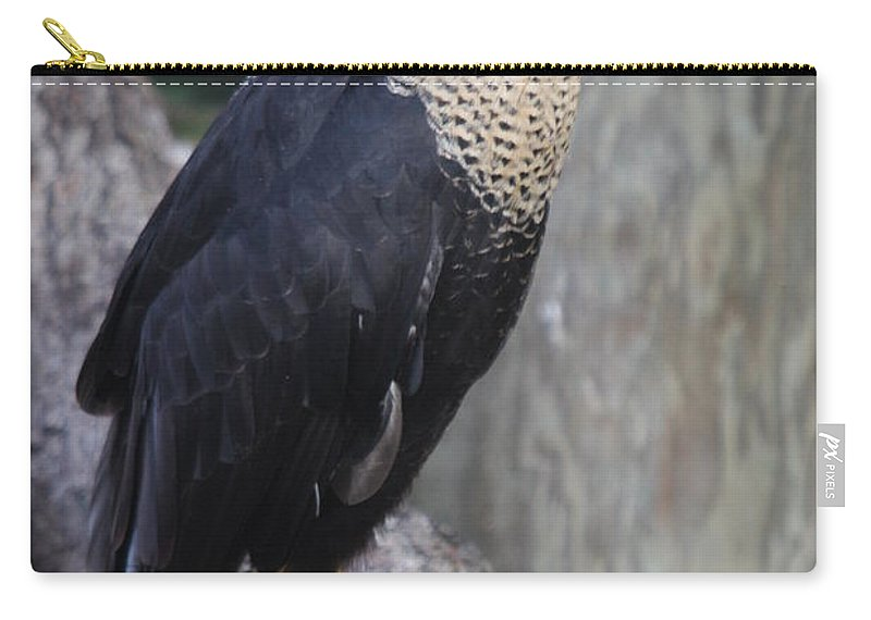Crested Carara Carry-all Pouch featuring the photograph Crested Carara by Christiane Schulze Art And Photography