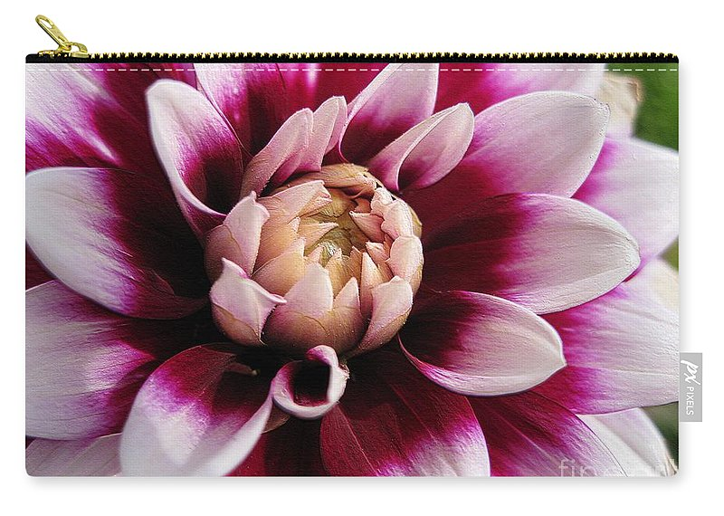 Dahlia Carry-all Pouch featuring the digital art Dahlia Named Mystery Day by J McCombie