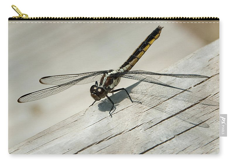 Photography Carry-all Pouch featuring the photograph Dragonfly by Steven Natanson