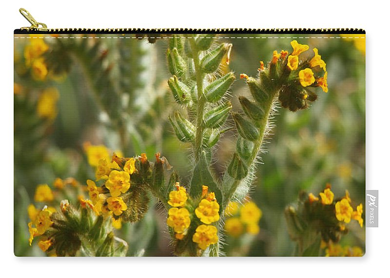 Wildflowers Carry-all Pouch featuring the photograph Fiddleneck Flowers by Howard Stapleton