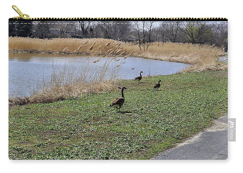 Geese Carry-all Pouch featuring the photograph 3 Geese by Verana Stark