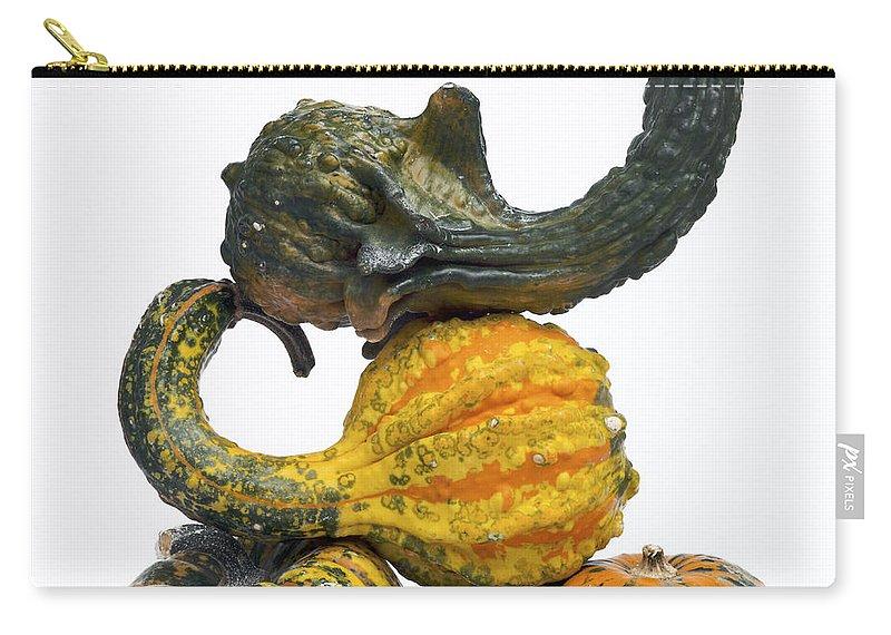 Food Carry-all Pouch featuring the photograph Gourds And Pumpkins by Bernard Jaubert