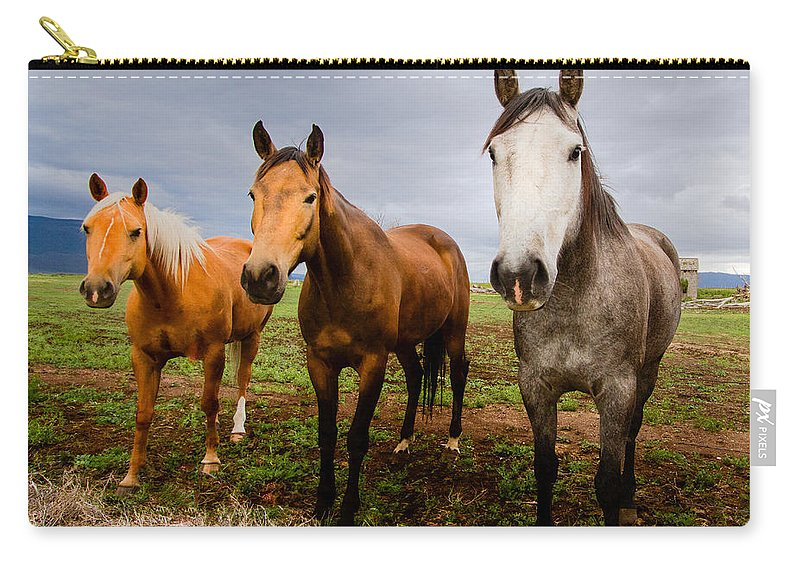 Mammal Carry-all Pouch featuring the photograph 3 Horses by Jean Noren