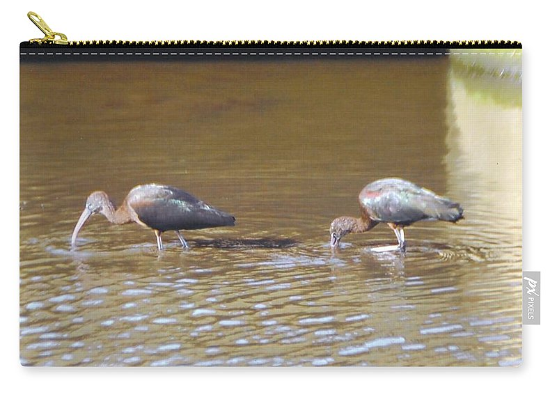 Feeding In Ditch Carry-all Pouch featuring the photograph Ibis by Robert Floyd