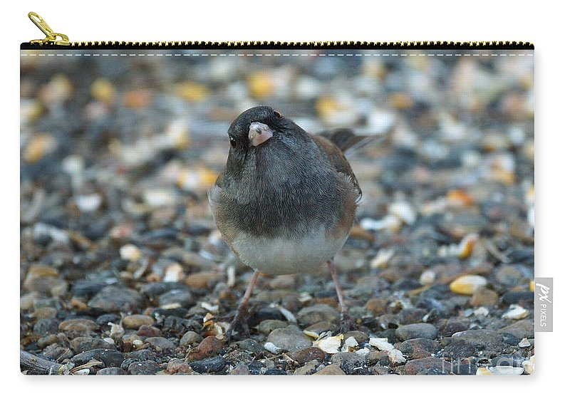 Dark Eyed Junco Carry-all Pouch featuring the photograph Junco by Lori Tordsen