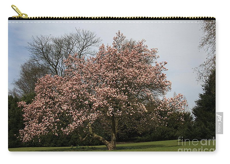 Magnolia Tree Carry-all Pouch featuring the photograph Magnolia Tree by Christiane Schulze Art And Photography