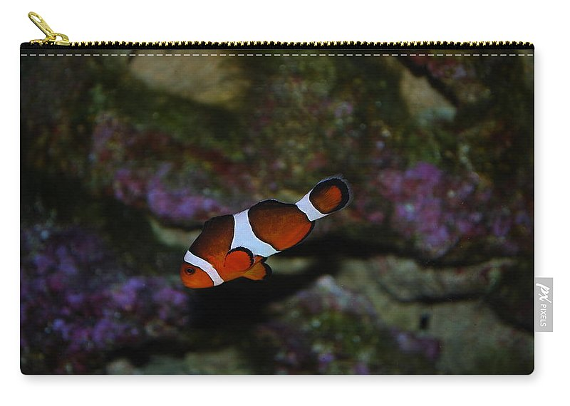 Taken Through Side Of Aquarium Carry-all Pouch featuring the photograph Nemo by Robert Floyd