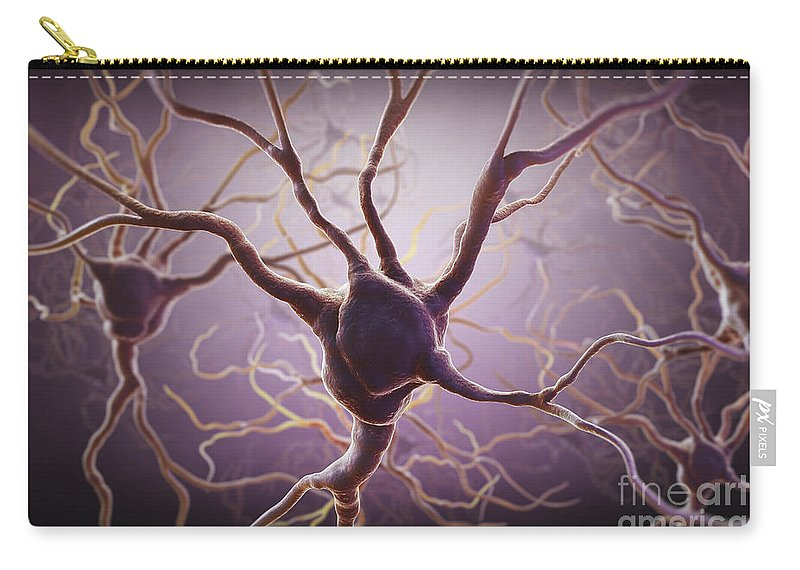 Biomedical Illustration Carry-all Pouch featuring the photograph Neuron by Science Picture Co