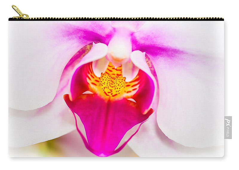 Orchid Carry-all Pouch featuring the photograph Orchid by Dennis Goodman