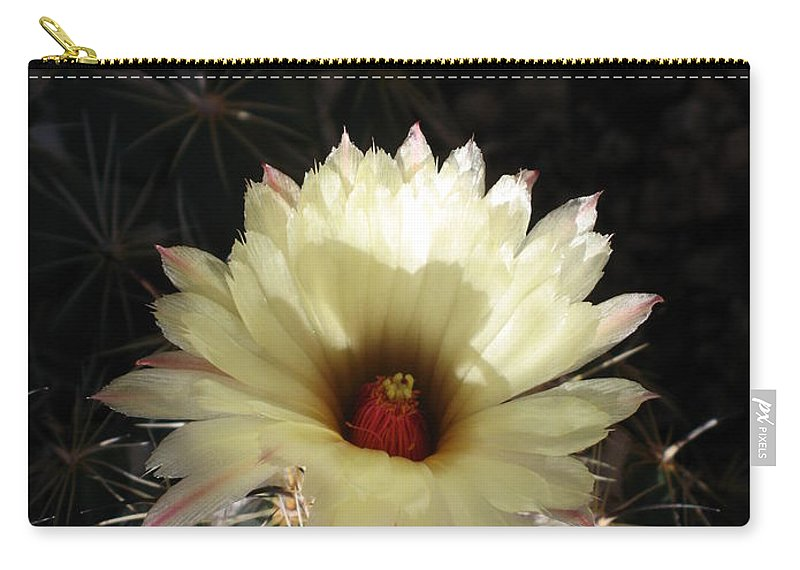 Cactus Carry-all Pouch featuring the photograph Pure Beauty by Christiane Schulze Art And Photography
