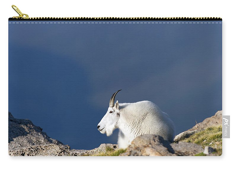 Rocky Carry-all Pouch featuring the photograph Rocky Mountain Goat by Gary Langley