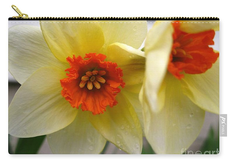 Mccombie Carry-all Pouch featuring the photograph Small-cupped Daffodil Named Barrett Browning by J McCombie