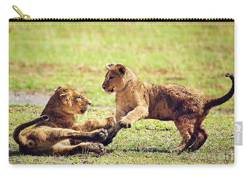 Africa Carry-all Pouch featuring the photograph Small Lion Cubs Playing. Tanzania by Michal Bednarek