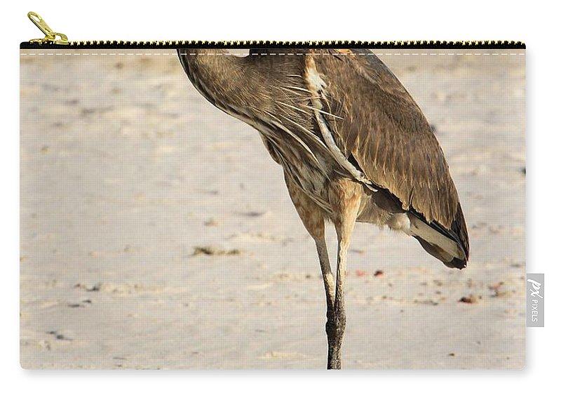 Gulf Islands National Seashore Carry-all Pouch featuring the photograph Strike A Pose by Adam Jewell
