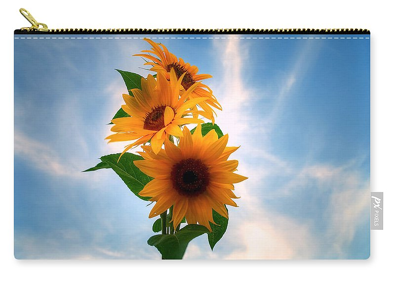 Sommer Carry-all Pouch featuring the pyrography Summer by Steffen Gierok