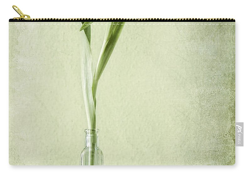 Tulpen Carry-all Pouch featuring the pyrography Waiting For Spring by Steffen Gierok
