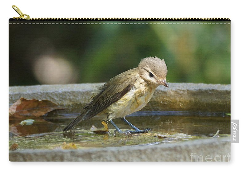 Warbling Vireo Carry-all Pouch featuring the photograph Warbling Vireo by Lori Tordsen
