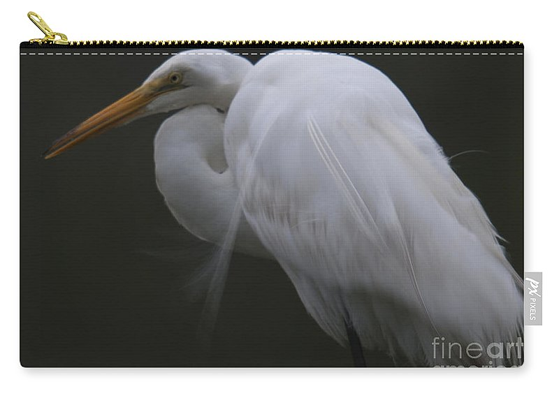 White Heron Carry-all Pouch featuring the photograph White Heron Portrait by Dale Powell