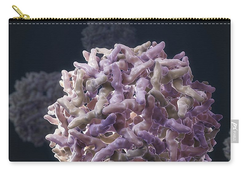 Ill Carry-all Pouch featuring the photograph Yellow Fever Virus by Science Picture Co