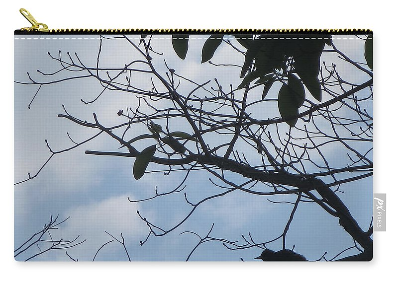 Bird Carry-all Pouch featuring the photograph Camera Peak Thru Nature Buy Faa Print Products Or Down Load For Self Printing Navin Joshi Rights Man by Navin Joshi