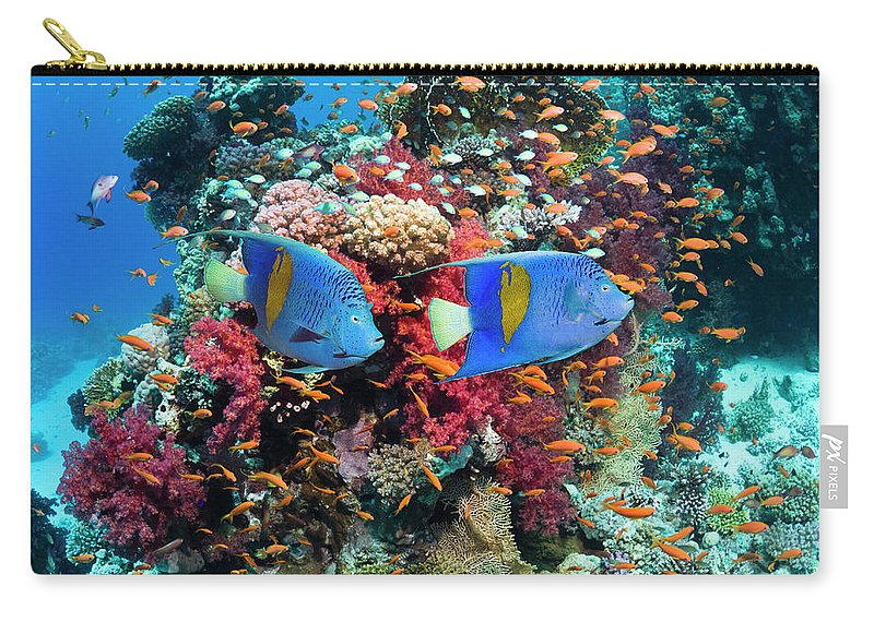 Underwater Carry-all Pouch featuring the photograph Coral Reef Scenery by Georgette Douwma