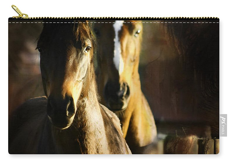 Horse Carry-all Pouch featuring the photograph Autumn Colors by Angel Ciesniarska