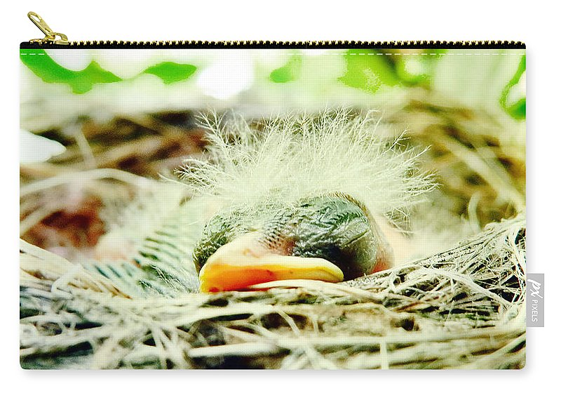 Nature Carry-all Pouch featuring the photograph Baby Face by Art Dingo