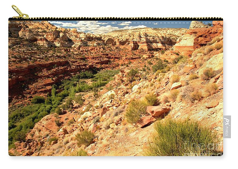 Calf Creek Falls Carry-all Pouch featuring the photograph Calf Creek Falls Canyon by Adam Jewell