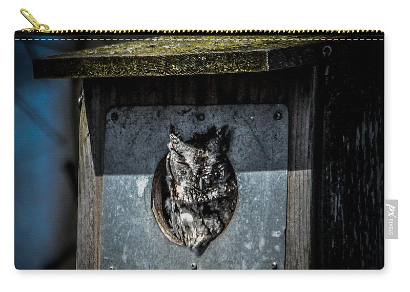 Bird Carry-all Pouch featuring the photograph Eastern Screech Owl by Ronald Grogan