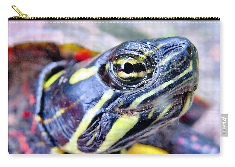 Nature Carry-all Pouch featuring the photograph Face Frame by Art Dingo