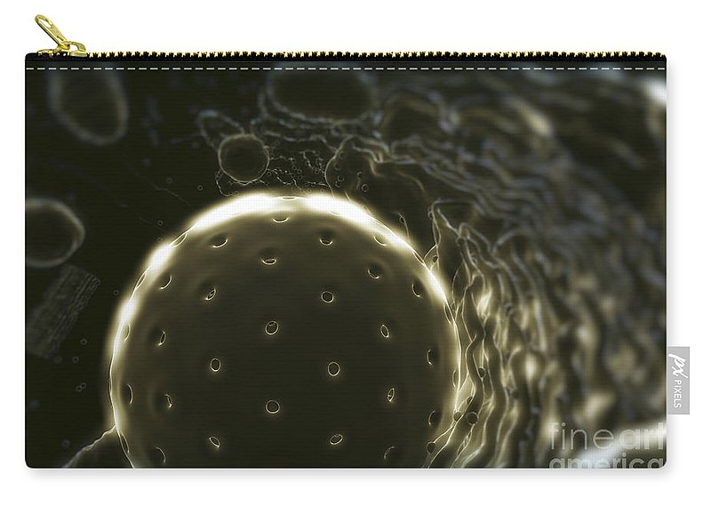Cells Carry-all Pouch featuring the photograph Inner Workings Of A Human Cell by Science Picture Co