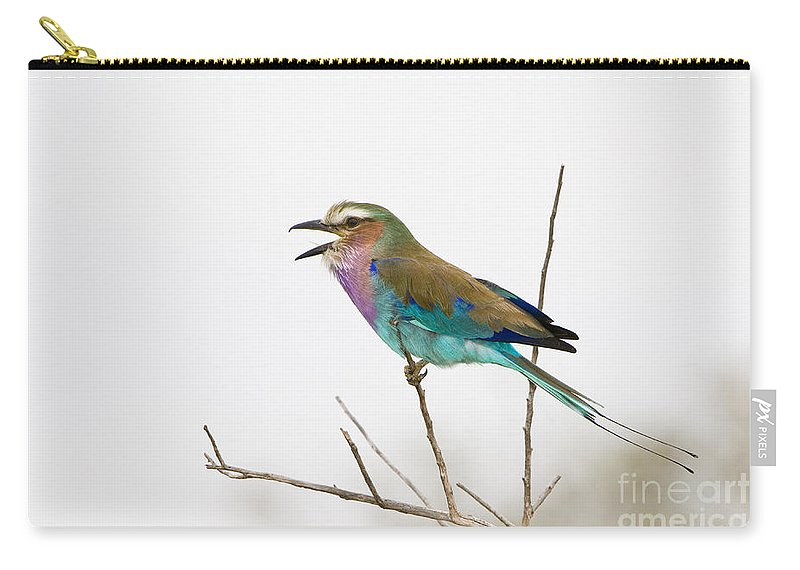 African Fauna Carry-all Pouch featuring the photograph Lilac-breasted Roller by John Shaw