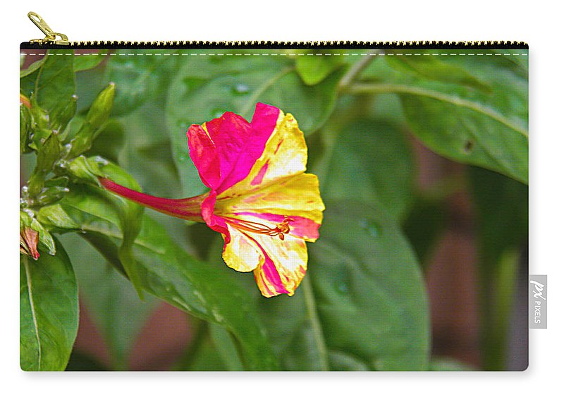 Flower Carry-all Pouch featuring the photograph 4 Oclocks by Nick Kirby