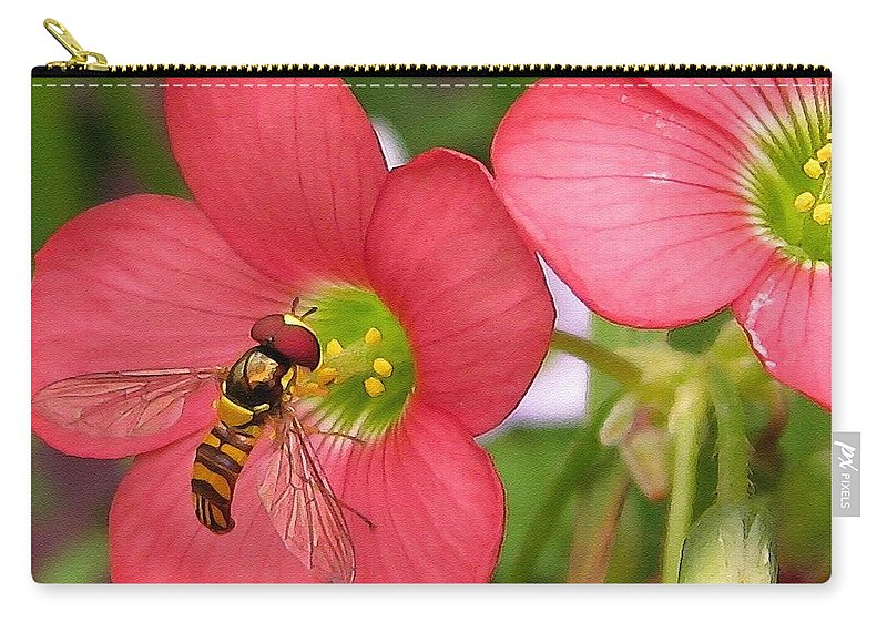 Oxalis Deppei Carry-all Pouch featuring the painting Oxalis Deppei Named Iron Cross by J McCombie