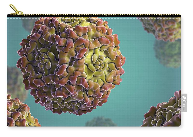 Digitally Generated Image Carry-all Pouch featuring the photograph Parvovirus B19 by Science Picture Co