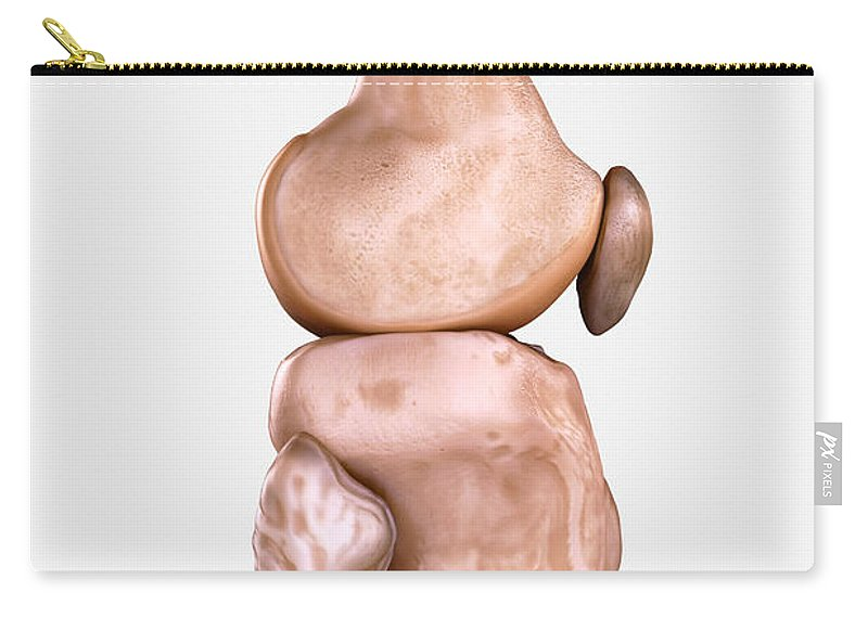 3d Visualisation Carry-all Pouch featuring the photograph Right Knee Bones by Science Picture Co