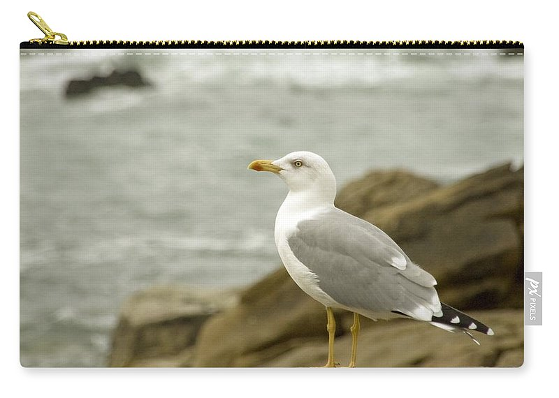 Flight Carry-all Pouch featuring the photograph Seagull by Paulo Goncalves