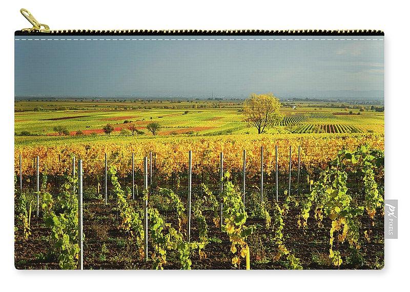 Scenics Carry-all Pouch featuring the photograph Vineyard Landscape by Jochen Schlenker
