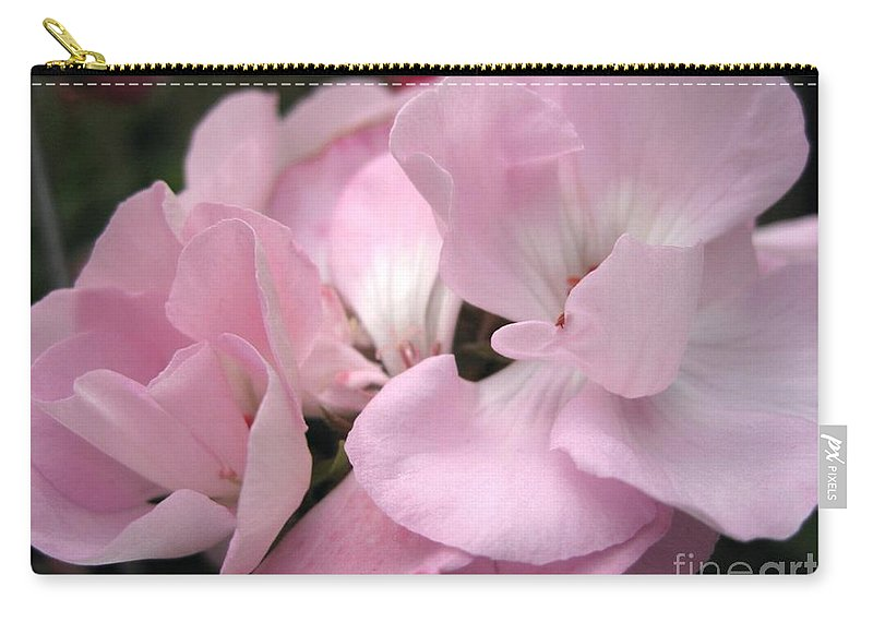 Zonal Geranium Carry-all Pouch featuring the photograph Zonal Geranium Named Tango Light Orchid by J McCombie