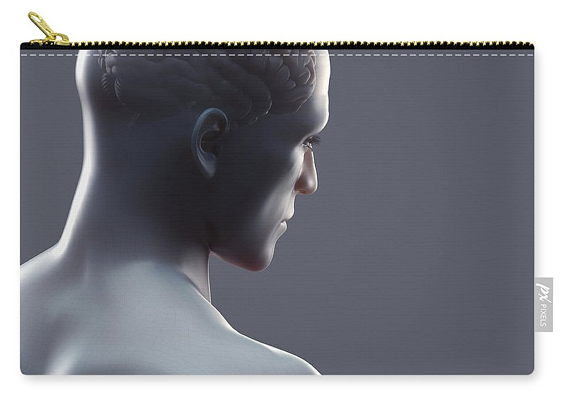 Human Form Carry-all Pouch featuring the photograph Human Brain by Science Picture Co